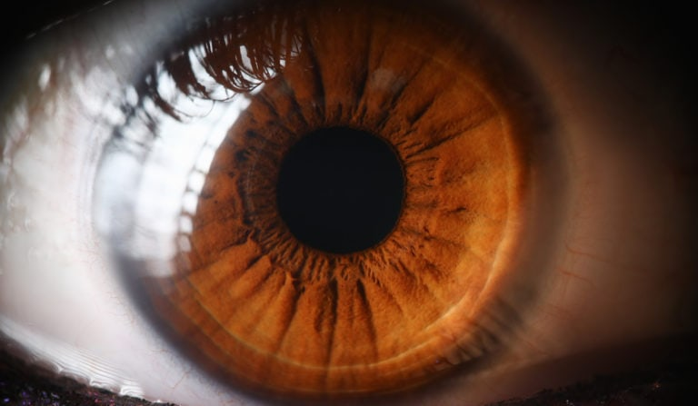 An extreme close-up image of a brown eye
